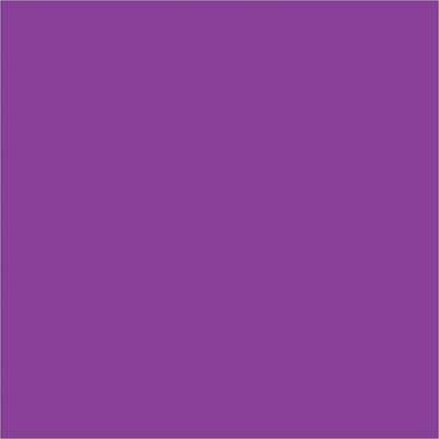 """4 x 4"""" Purple Inventory Rectangle Labels"""